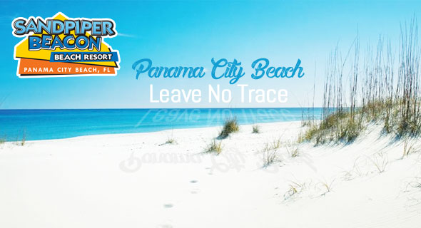 Where The Locals Eat Panama City Beach Florida