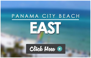The Perfect Way To See Cur Weather And Surf Conditions In Panama City Beach Check Out Some Of Fun Hening Right On